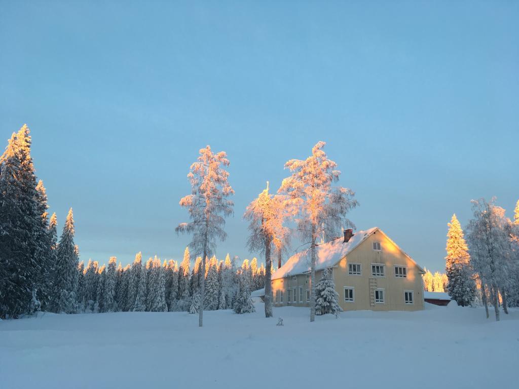 Mustarinda-talo auringon nousun aikaan talvisessa maisemassa.